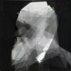 Image of Darwin, composed of 50 polygons, selected by their similaity to a portrait of Darwin.